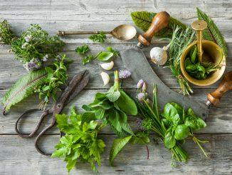 bezsenność problemy ze snem zioła