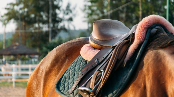 niezbędny sprzęt jeździecki