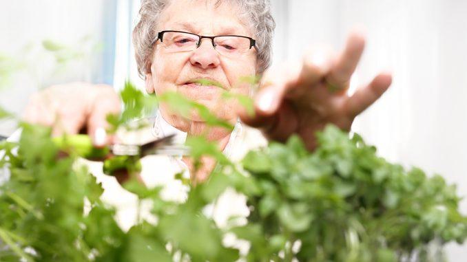 prywatny dom opieki dla starców