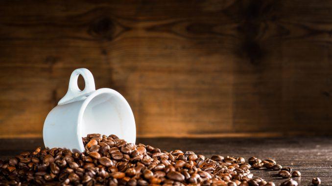 wpływ kawy na organizm sportowca