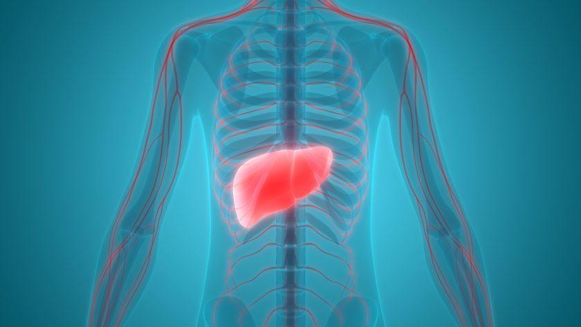Choroby genetyczne i immunologiczne wątroby