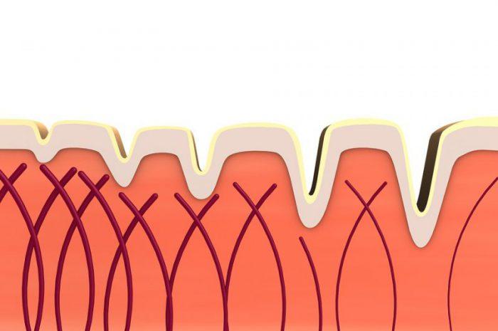 Kosmetyki z kolagenem – jak dbać o jędrność i nawilżenie skóry?