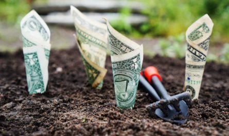 dolary zakopane w ogródku