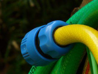 przybliżenie węża ogrodowego