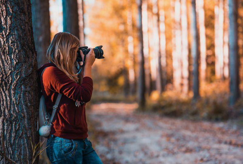 kobieta robi zdjecia w lesie