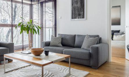 salon z sofami (1)